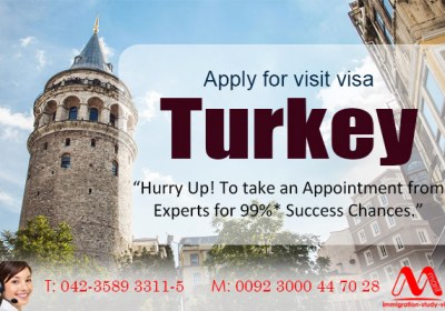 Apply for Turkey visit visa