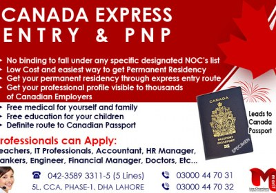 Apply Canada Business Immigration Through our Expert…